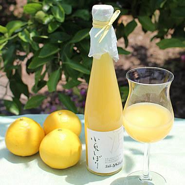 白木果樹園オリジナル。小夏果汁100%無添加ジュース。何も加えない、そのままの美味しさ【小夏しぼり】