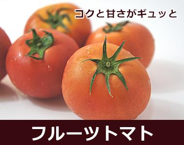 小さな果実にコクと甘さがギュッと【高知県産フルーツトマト】