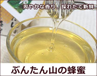 爽やかな香り。白木果樹園オリジナル蜂蜜【ぶんたん山の蜂蜜】