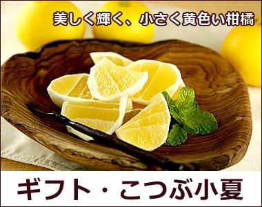 美しく輝く、小さく黄色い柑橘【極上こつぶ小夏】