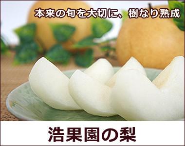 本来の味を大切に、樹なり熟成の美味しさ【浩果園の梨】