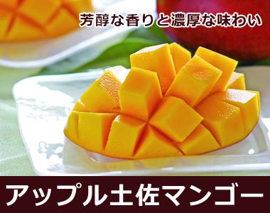 緻密な果肉から、甘酸っぱい果汁があふれます【アップル土佐マンゴー】