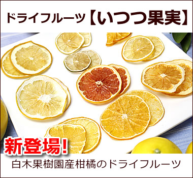 白木果樹園で栽培した柑橘をドライフルーツにしたオリジナルドライフルーツ【いつつ果実】