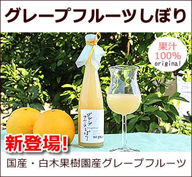 白木果樹園オリジナル。グレープフルーツ果汁100%無添加ジュース。贅沢に丸搾り、そのままの美味しさ【グレープフルーツしぼり】