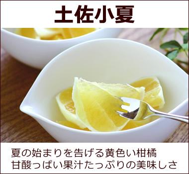 夏の始まりを告げる甘酸っぱい黄色の柑橘。 リンゴのように皮をむき、甘皮ごとお召し上がり下さい。 【土佐小夏】