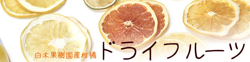 白木果樹園産柑橘ドライフルーツ