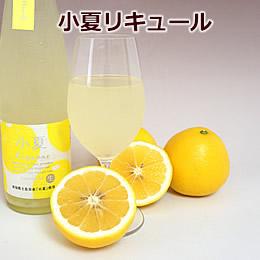 小夏に蜂蜜を加えた爽やかな香りのお酒【小夏リキュール】