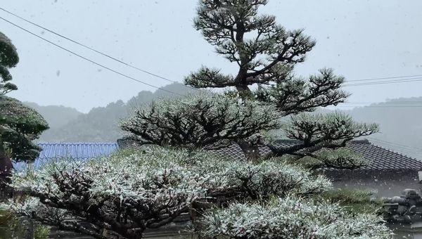 2021年2月17日の大雪