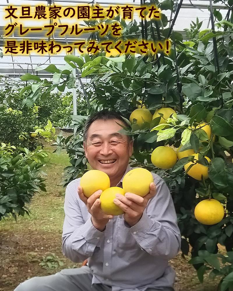 国産グレープフルーツを持つ園主