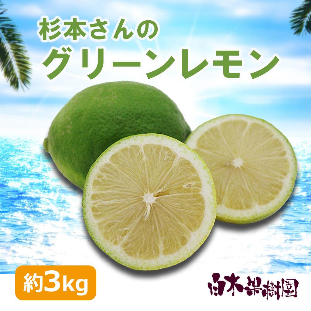 杉本さんのグリーンレモン 約3kg