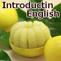 Introductin English