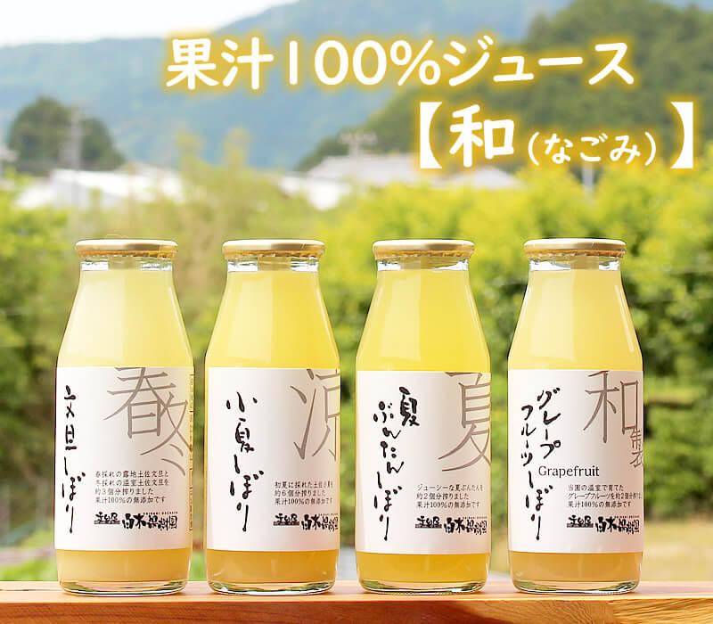 新商品・ストレート果汁100%ジュース飲みきりサイズ
