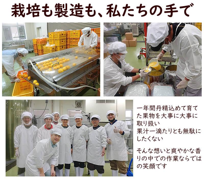 果汁100%ジュース製造工程
