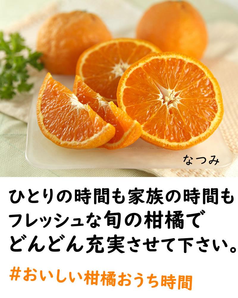 フレッシュな旬の柑橘で充実時間