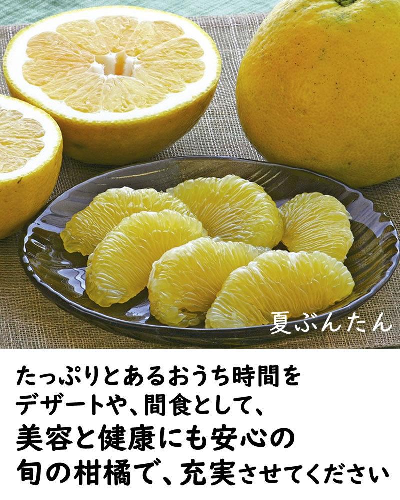 美容と健康にも安心の旬の柑橘でおうち時間充実