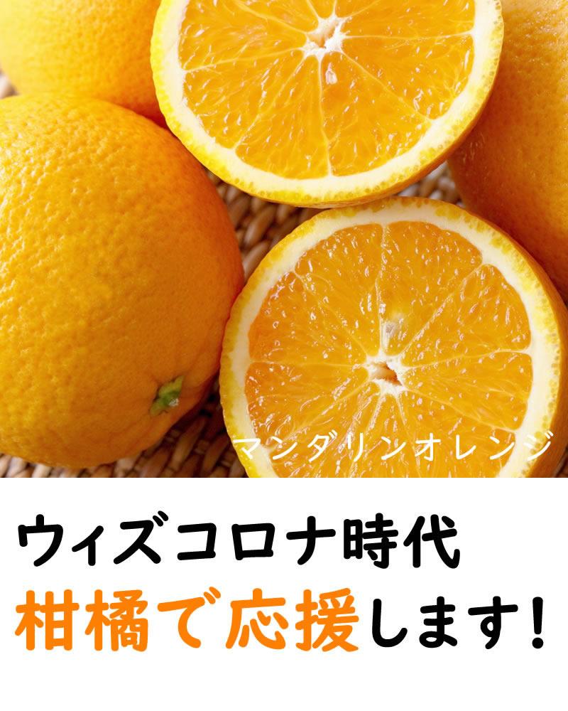 ウィズコロナ時代を柑橘で応援