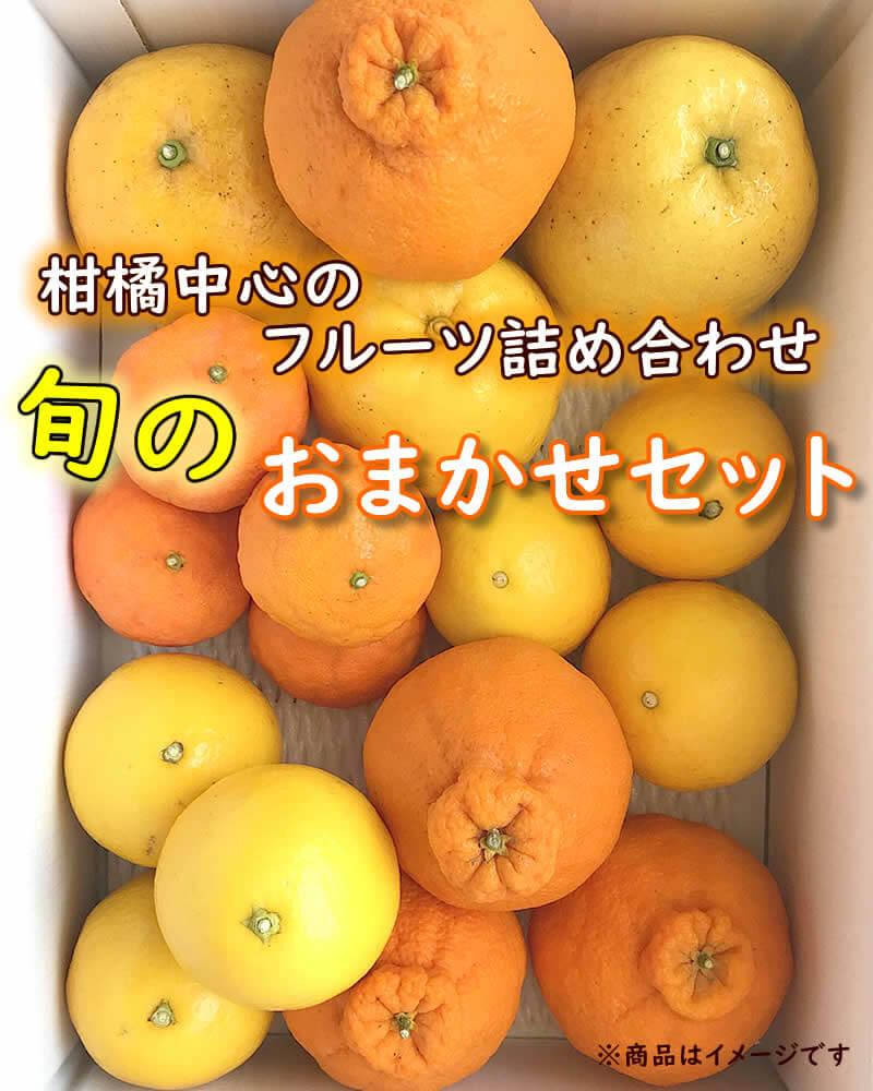 フルーツ詰め合わせ、旬のおかませセット