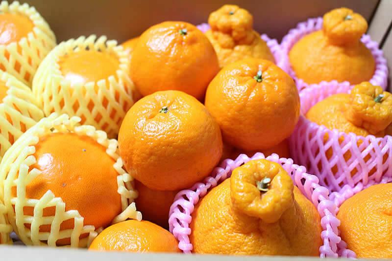 選りすぐりの旬のフルーツ