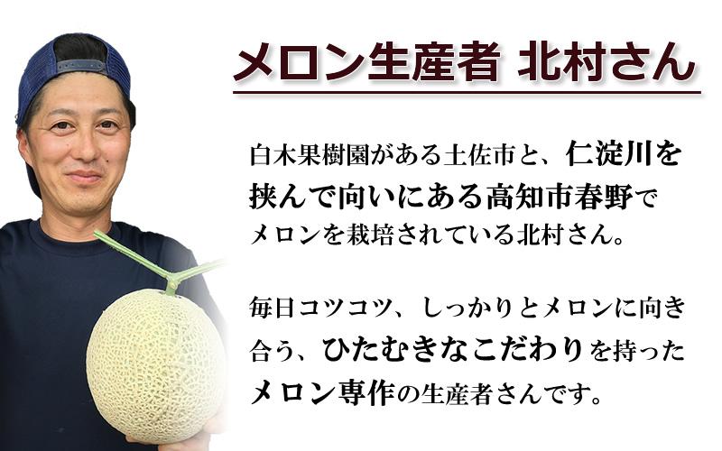 北村さんのマスクメロン