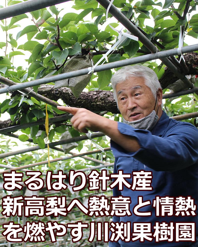 熱意と情熱の果樹園