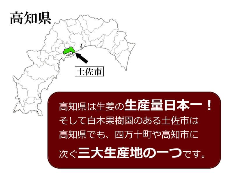 高知県は、生姜の生産日本一