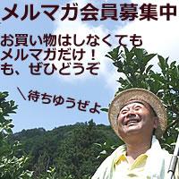 白木果樹園のメルマガ