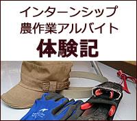 インターンシップ生・アルバイト体験記