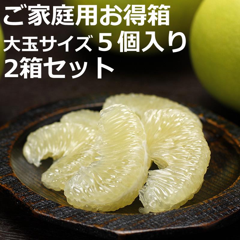 高知県産水晶文旦 ご家庭用お得箱 5個入り×2箱セット