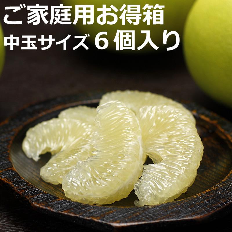 高知県産水晶文旦 ご家庭用お得箱 6個入り