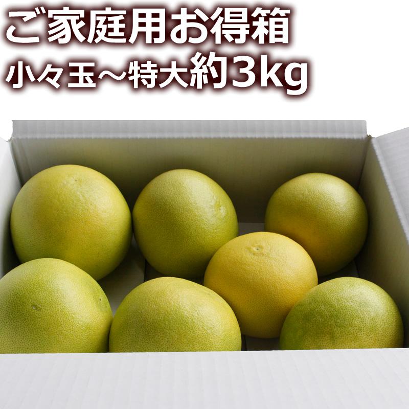 高知県産水晶文旦 ご家庭用お得箱3kg