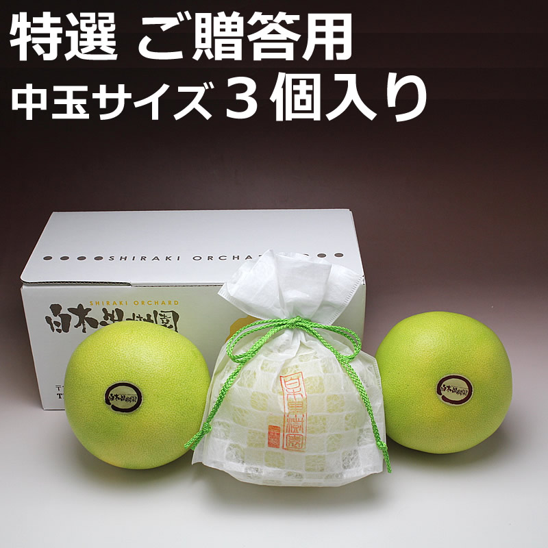 高知県産水晶文旦 ご贈答用 3個入り