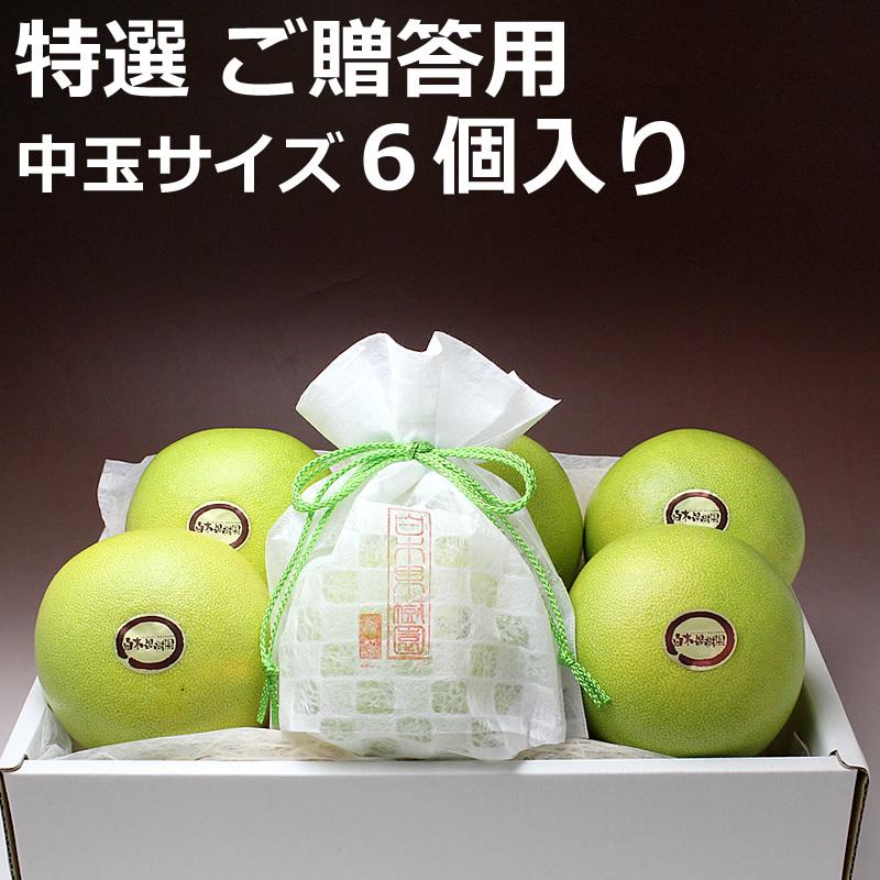 高知県産水晶文旦 ご贈答用 6個入り
