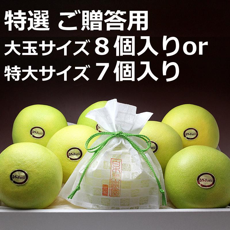 高知県産水晶文旦 ご贈答用 8個入り