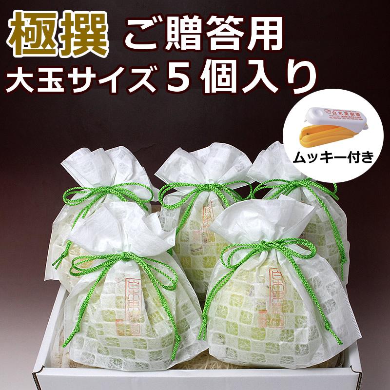 高知県産水晶文旦 ご贈答用 極撰5個入り