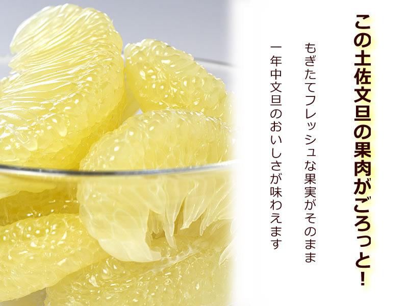 土佐文旦の果肉がゴロっと入って、もぎたてフレッシュな果実をそのまま、一年中文旦の美味しさが味わえます