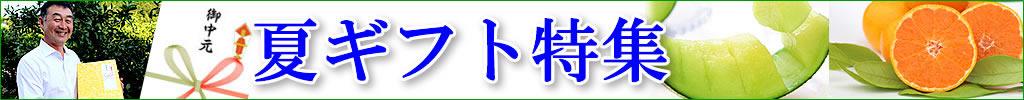 2019年白木果樹園がお届けする【夏ギフト特集】