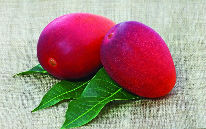2つ並んだマンゴー