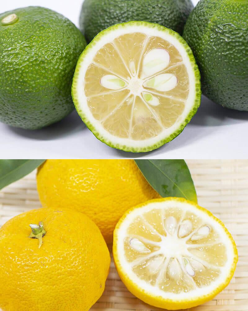 青ゆずと黄色柚