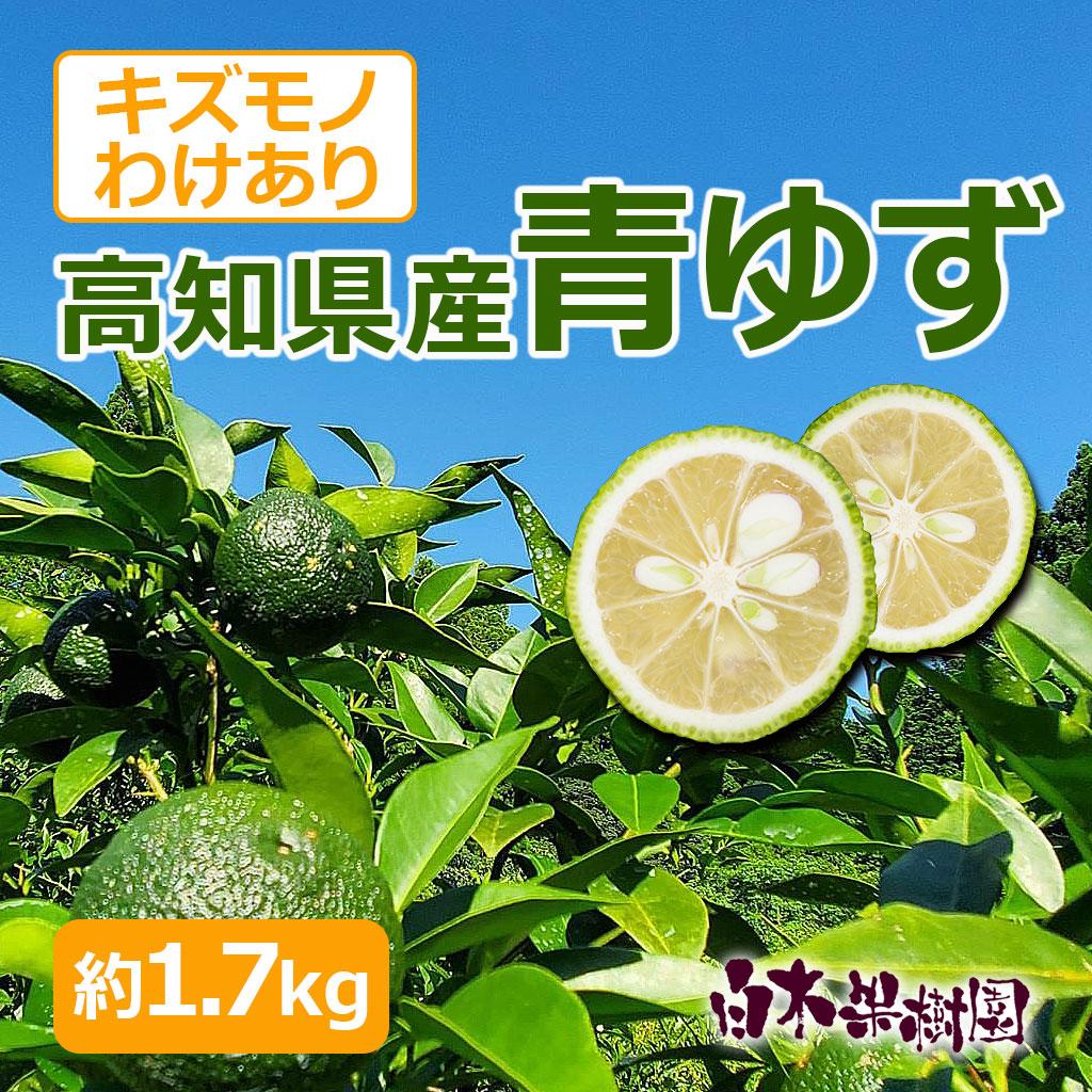 高知県産青ゆず 約1.7kg
