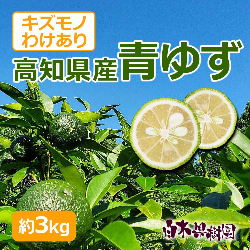 高知県産ゆず 約3kg