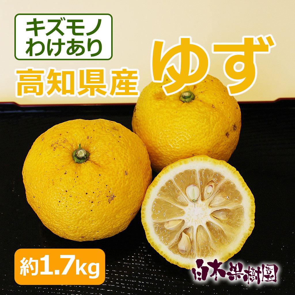 高知県産ゆず 約1.7kg